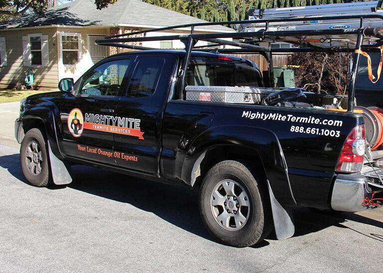 Bay Area Best Termite Exterminator Termite Control Company