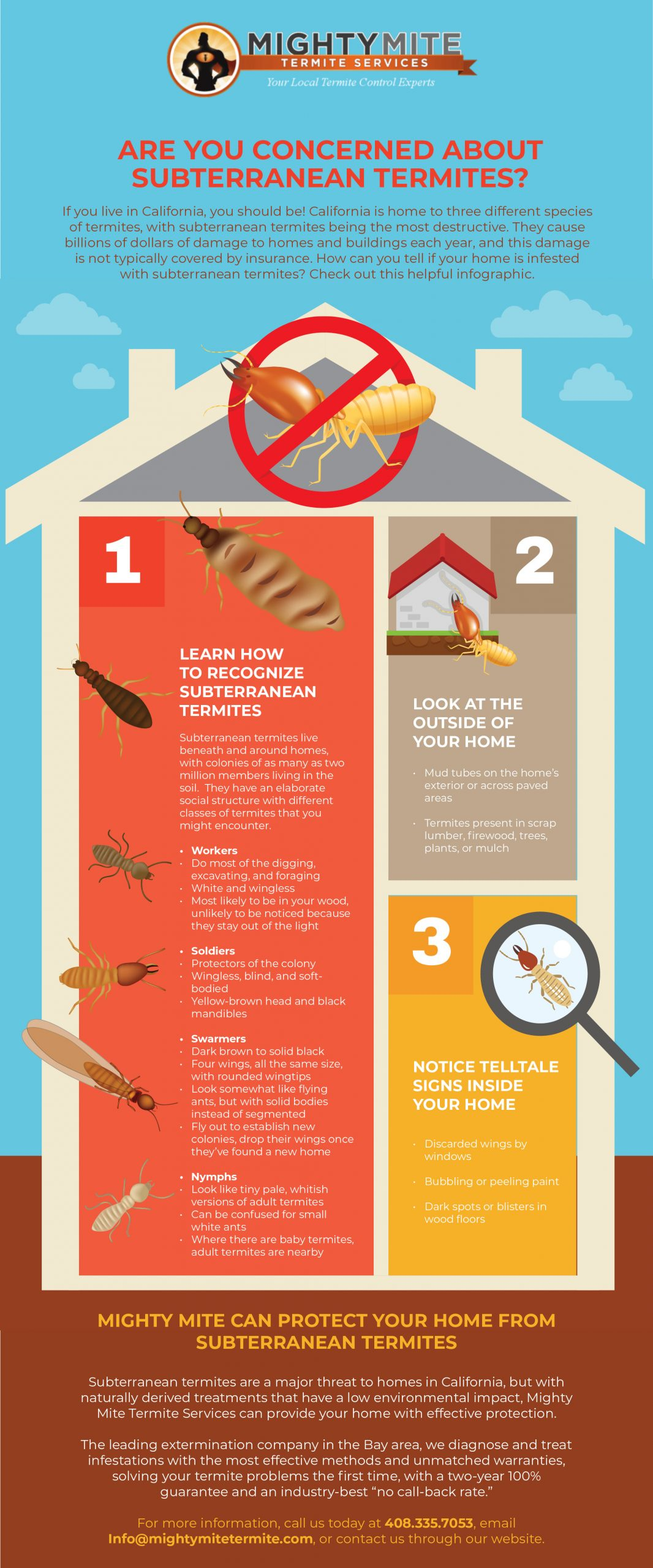 Subterranean termites infographic Mighty might