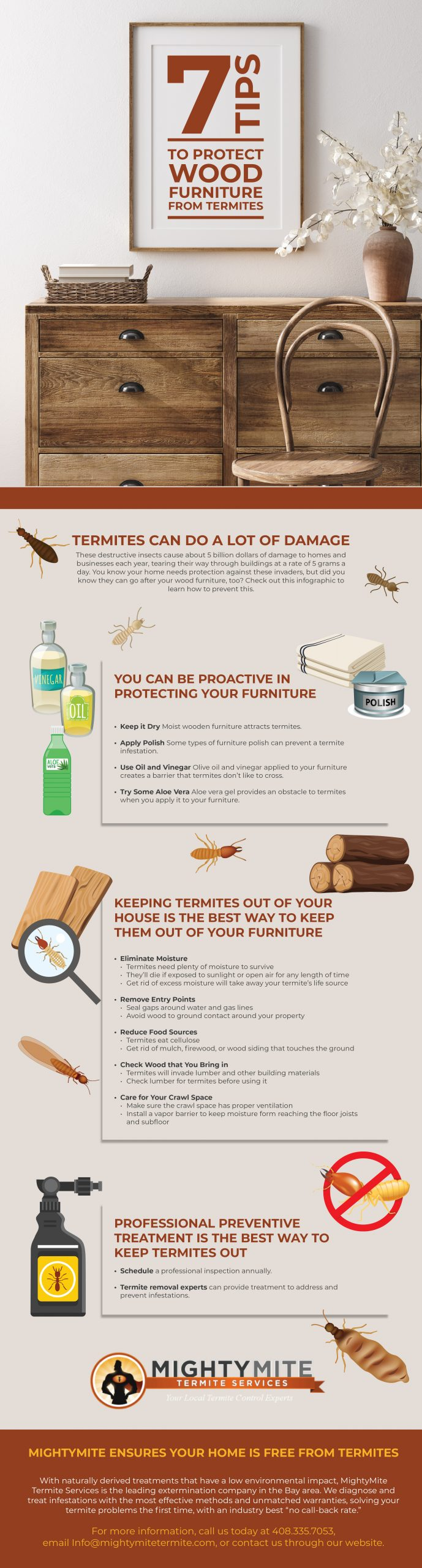 7 tips to protect wood from termites infographic