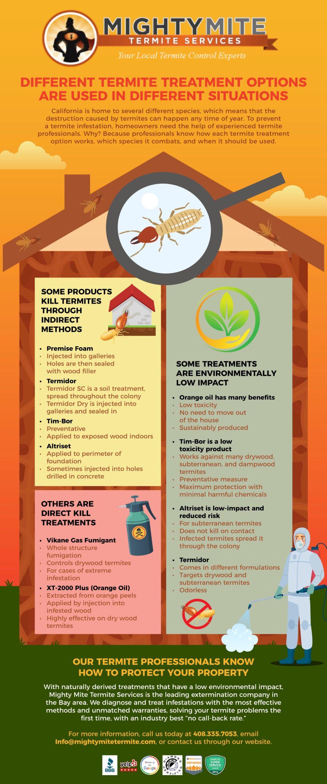 Infographic Termite Treatment Options