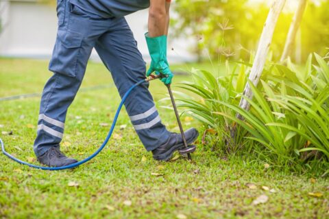termite control technician treats the soil in a garden